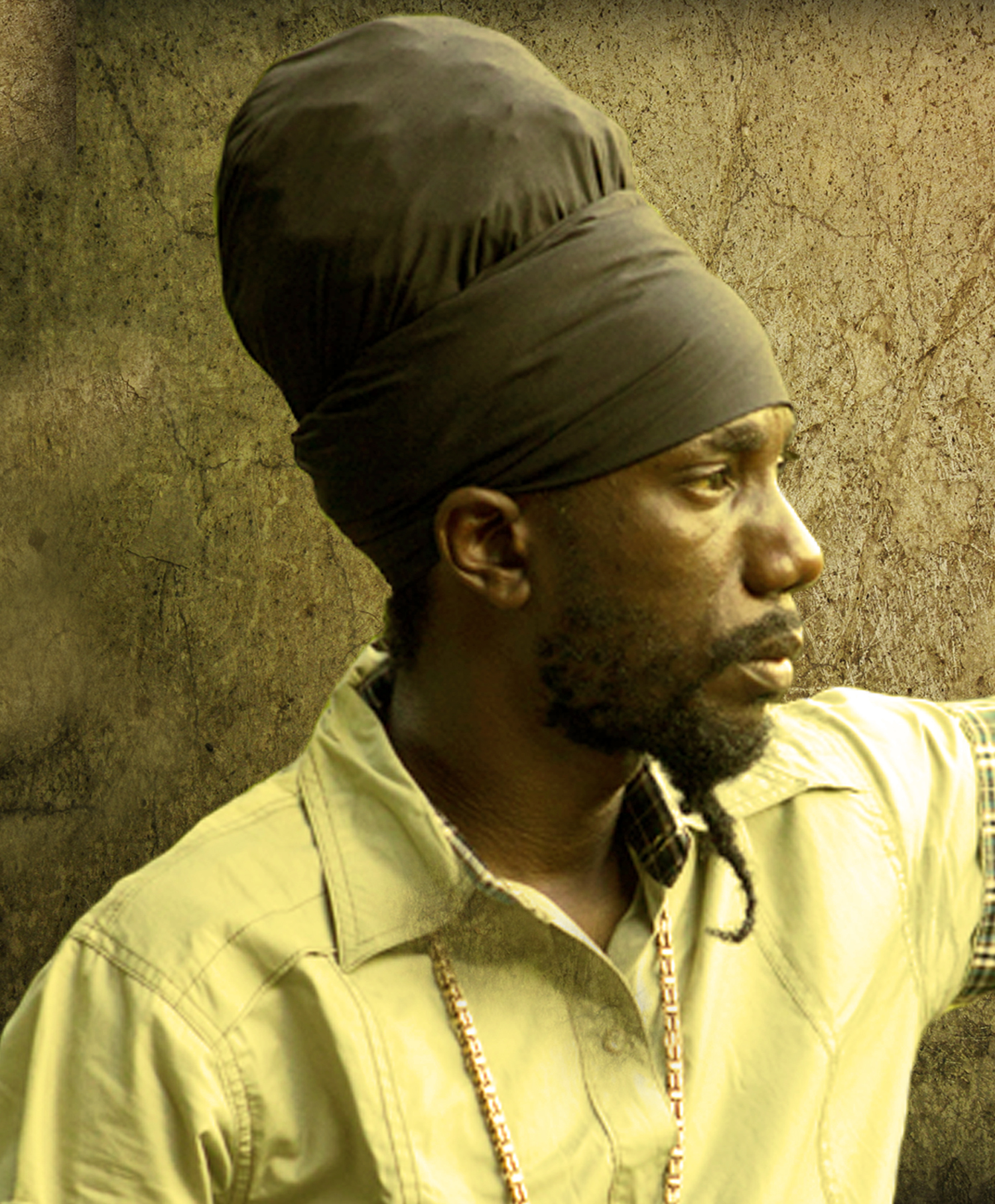 "Sizzla ""Free Up The Herbs"""