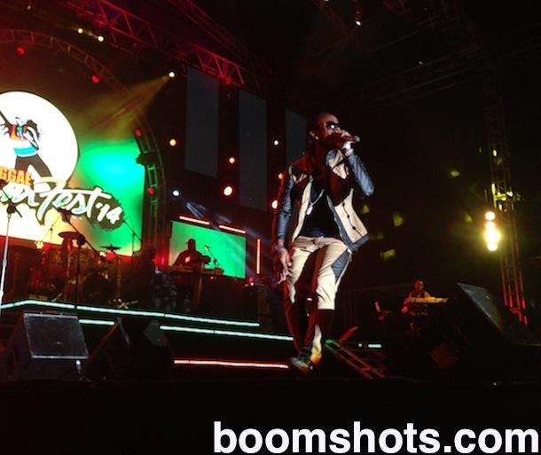 Reggae Sumfest Party Tun Up Boomshots - Reggae sumfest