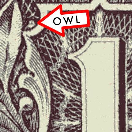 OWL 1 dOllar Bill